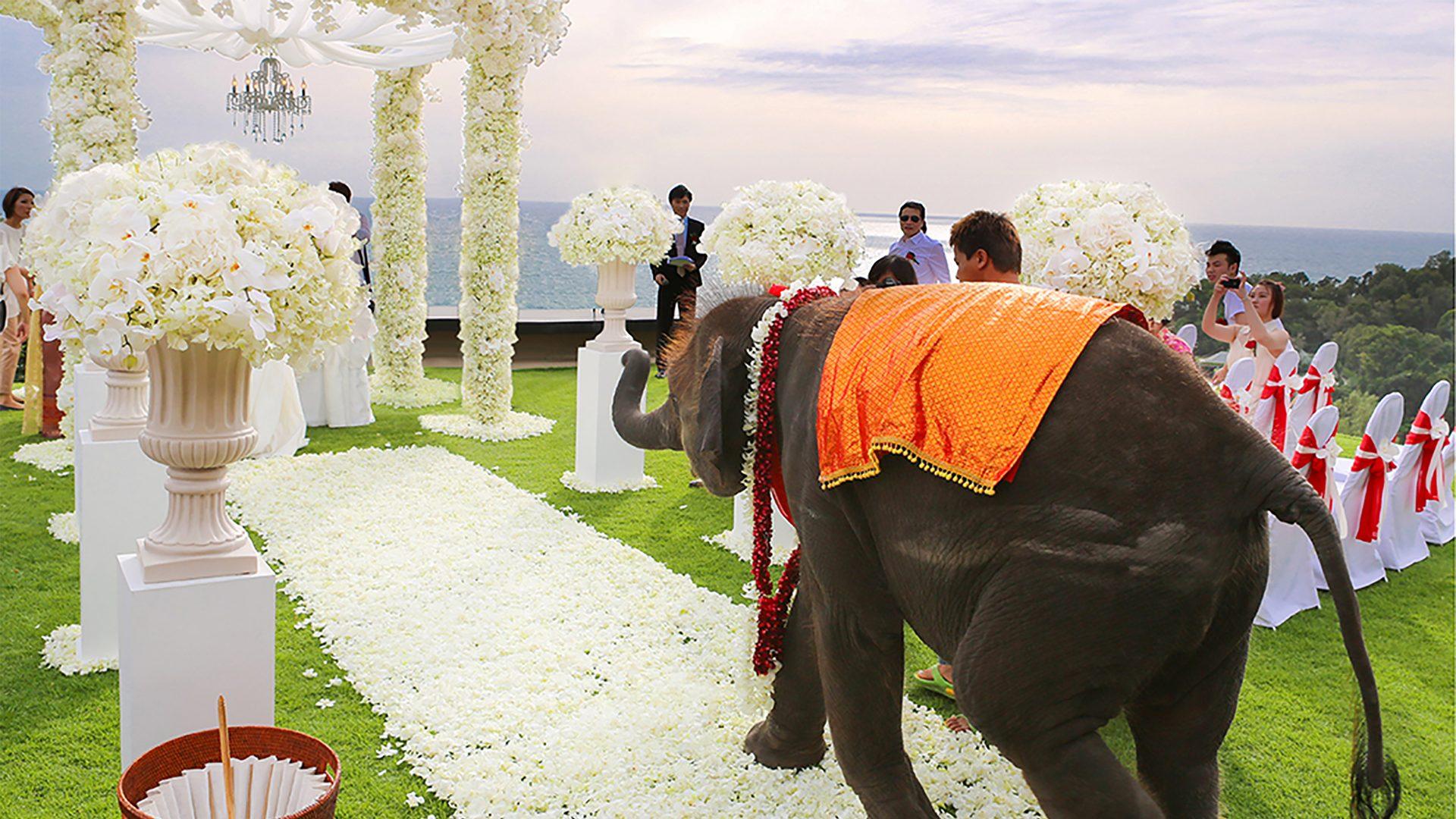 普吉島海外婚禮佈置